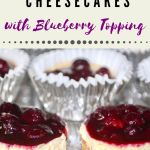 Mini cheesecakes with blueberry topping on top