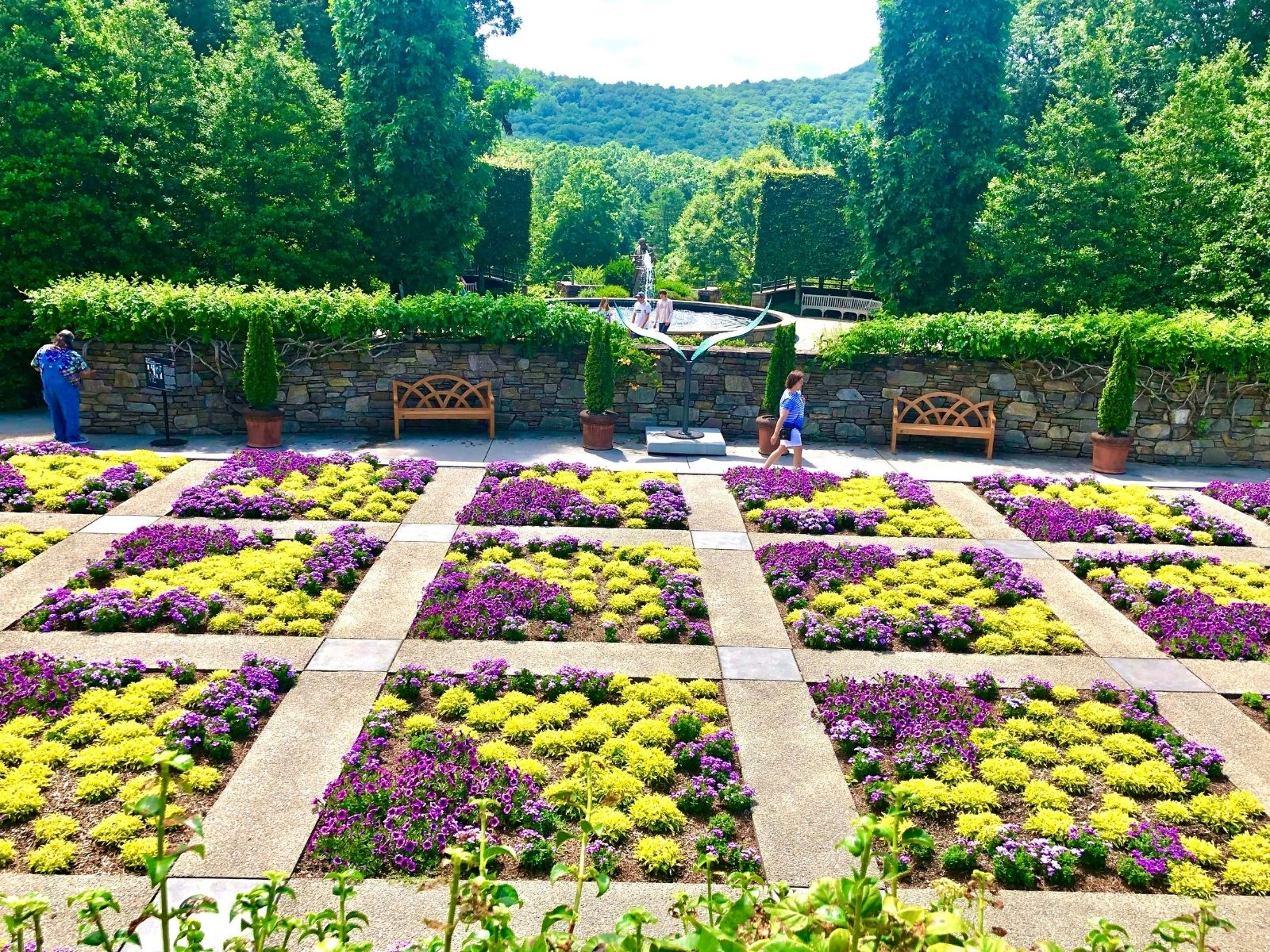 quilt garden with squares of bright yellow and purple flowers