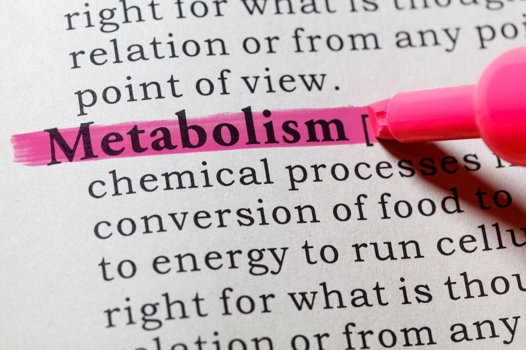 the word metabolism highlighted in pink on a block of text